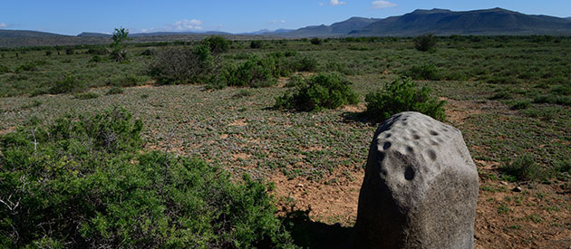 Things to Do and See at Camdeboo National Park www.south-africa-info.co.za
